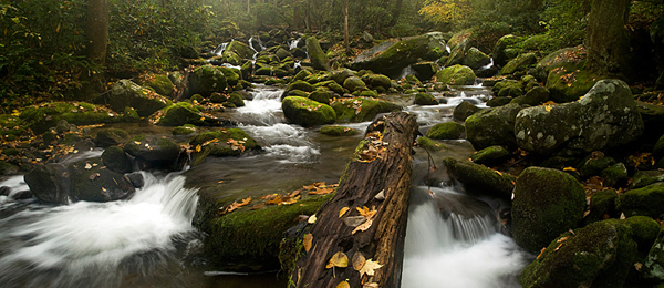 Roaring Fork Panoramic Cascade - Great Smoky Mountains National Park