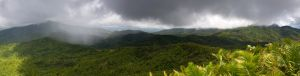 El-Yunque-Rain-Forest-Panoramic.jpg