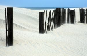 Outer_Banks_Pea_Island_6.jpg